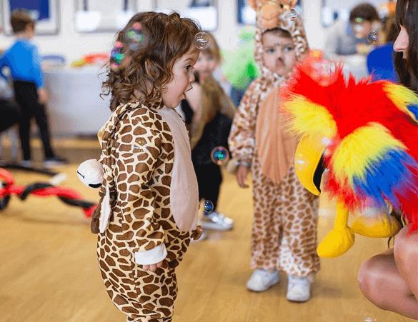 safari party